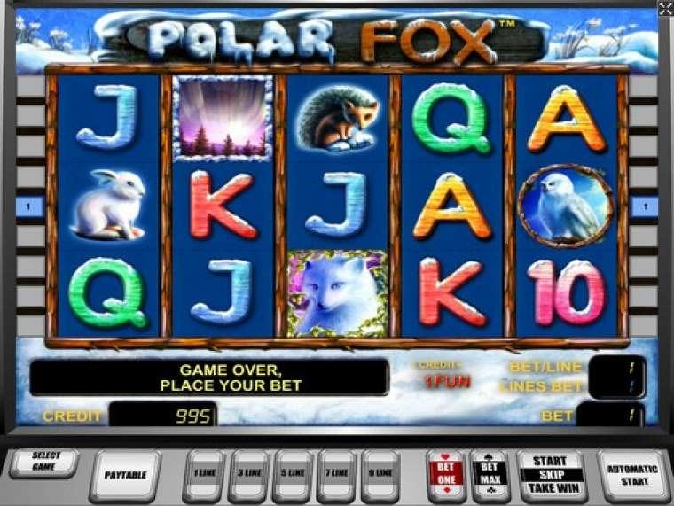 polar fox автомат